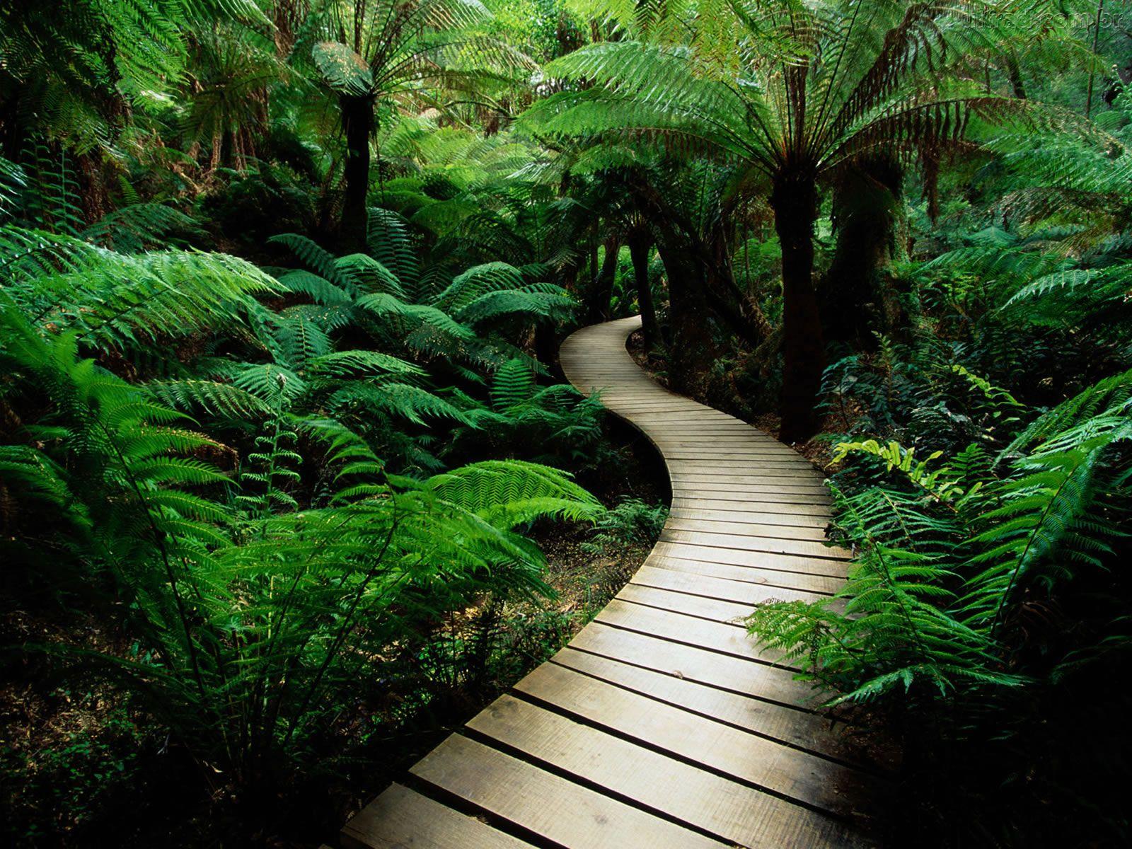 espiritualidade-e-natureza